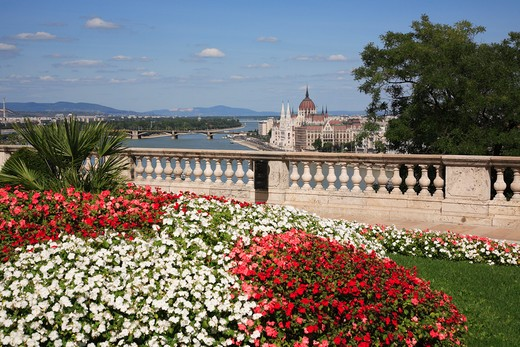 Hungary, Budapest, City skyline and flowers : Stock Photo