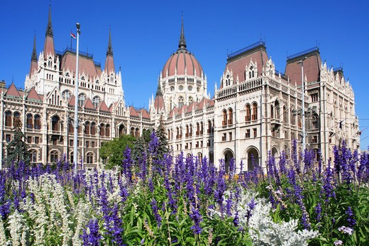 Hungary, Budapest, Parliament and flowers : Stock Photo