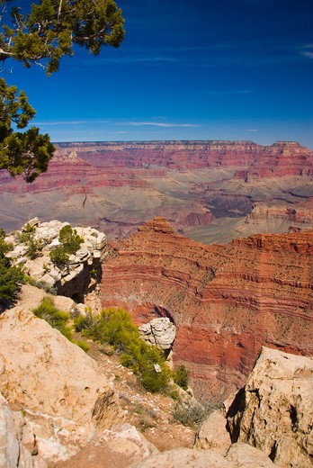 Stock Photo: 1885-27404 USA, Arizona, Grand Canyon, View across the Grand Canyon