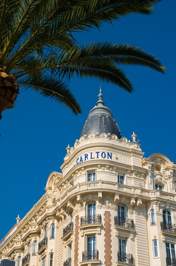 Stock Photo: 1885-28146 France, Cote d'Azur, Cannes, Carlton Hotel on Boulevard de la Croisette