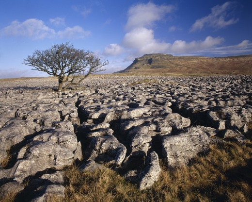 Stock Photo: 1885-5504 UK - England, Yorkshire, Ingleborough, Landscape in Winter