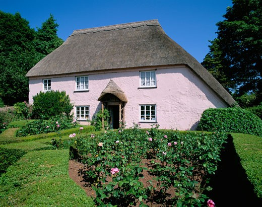UK - England, Devon, Torquay, Typical Thatched Cottage : Stock Photo