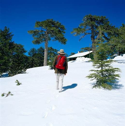 Stock Photo: 1885-6764 Cyprus, South, Troodos Mountains, Hiker in Snow