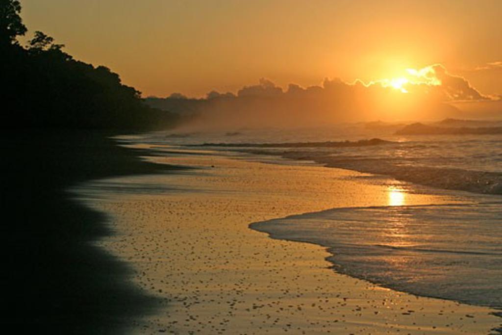 Stock Photo: 1885-9540 Costa Rica, , Corcovado National Park, Beach scene at sunrise