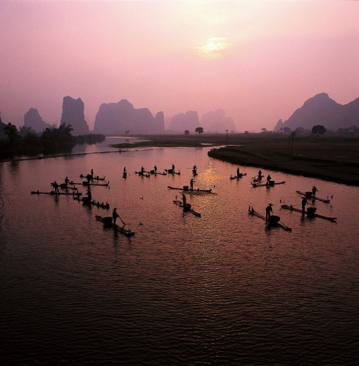 Chinese fishmen fishing with cormorant on River Li,Guilin : Stock Photo