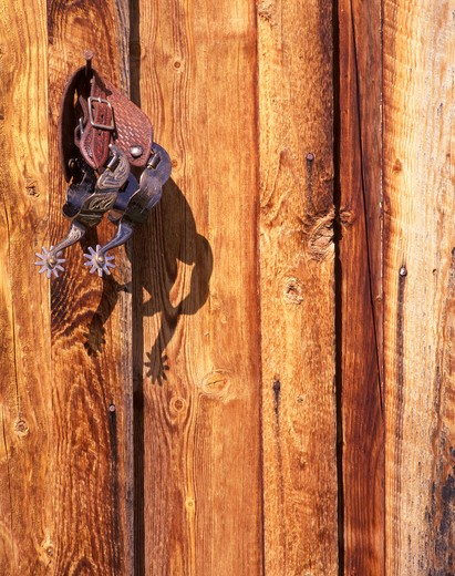 Spurs on cabin wall, Montana : Stock Photo
