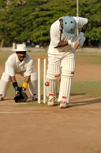 Stock Photo: 1886-47499 Indian right handed batsman played ball hitting pad showing lbw in cricket match