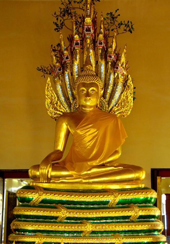 Wat Phra Chetuphon monastery King Rama one Chakri dynasty 16th century biggest temple in Thailand ; Pang Nak Prok under Naga's hood ; Thailand ; South East Asia : Stock Photo
