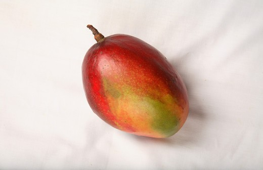 Stock Photo: 1886-49807 Fruit ; Red Mangos ; Sweet ; Sour test ; Colourful ; One mango in a plate ; India