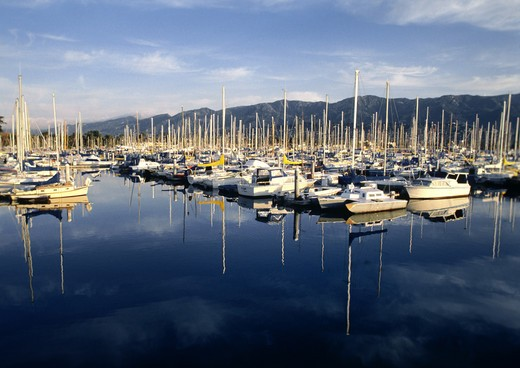 Stock Photo: 1886-50695 SAILBOATS at anchor - SANTA BARBARA HARBOUR