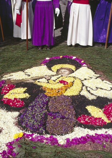 Stock Photo: 1886-52003 Purple-robed PENITENTS and ANGEL ALFOMBRA (carpet) made of sawdust and flowers for GOOD FRIDAY - ANTIGUA, GUATAMALA