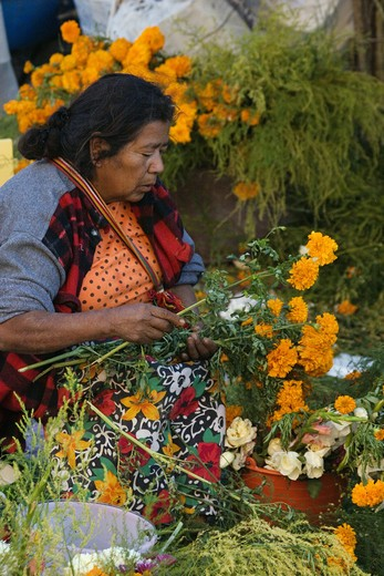 A MEXICAN WOMAN sells carnations during the DAY OF THE DEAD - SAN MIGUEL DE ALLENDE, MEXICO : Stock Photo