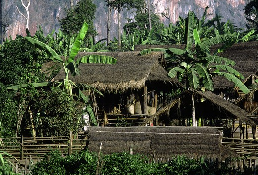Stock Photo: 1886-54878 PALONG VILLAGE houses - BURMESE TRIBE living in NORTHERN THAILAND