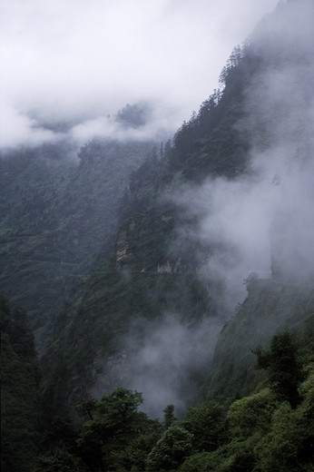 Stock Photo: 1886-55223 MONSOON MIST lingers in the FORESTED GORGE along the CHINESE built road just north of NEPAL - TIBET