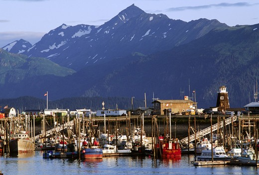 Stock Photo: 1886-55721 FISHING BOATS and YACHTS at anchor in the HARBOR below the PIER - HOMER, ALASKA