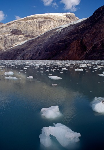 Stock Photo: 1886-55778 The clear, cold water of GLACIER BAY NATIONAL PARK - ALASKA