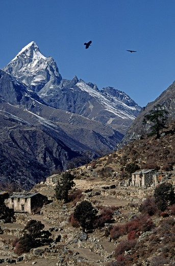 PHORTSE village with Himalayan backdrop - KHUMBU DISTRICT, NEPAL : Stock Photo
