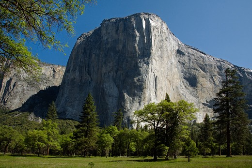 Stock Photo: 1886-56836 EL CAPITAN in the YOSEMITE VALLEY during springtime - YOSEMITE NATIONAL PARK, CALIFORNIA