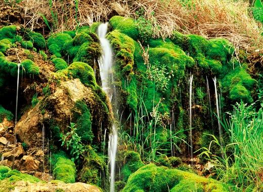 Stock Photo: 1886-57558 waterfall