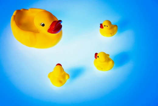 Stock Photo: 1886-58038 Duck Toy
