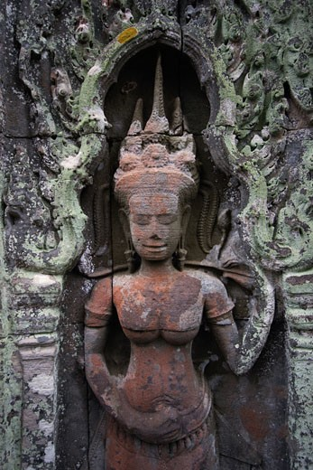 Lichen grows on a stone carved bas relief  Apsara (celestial maiden) at Ta Prohm, built by Jayavarman VII & part of the  Angkor Wat temple complex - Siem Reap, Cambodia    : Stock Photo
