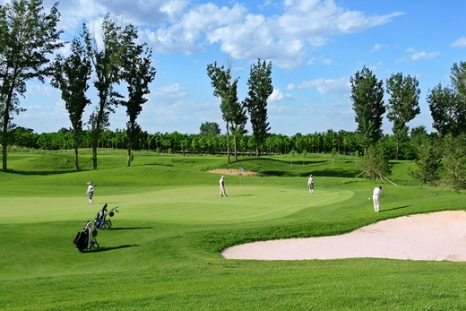 Stock Photo: 1886-58870 Golf Course View