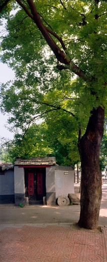 Stock Photo: 1886-60075 Traditional Structure In Hutong,Beijing,China