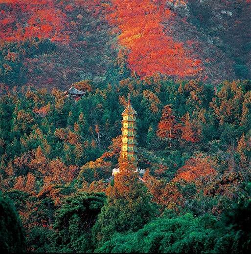 Stock Photo: 1886-61463 stupa at autumn Fragrant Hill,Beijing,China