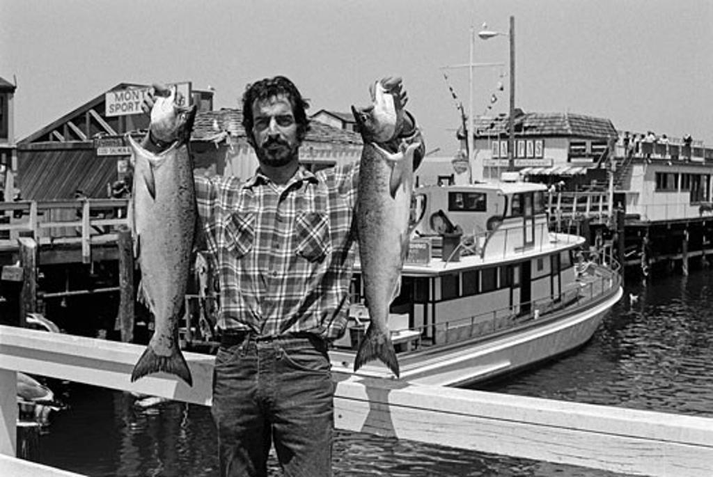Freshly caught SALMON are part of the local fishing economy on FISHERMANS WHARF - MONTEREY, CALIFORNIA   : Stock Photo
