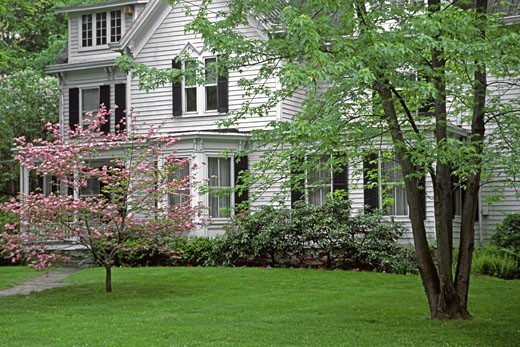 White COLONIAL MANSION with pink DOGWOOD TREE blooming in spring in a neighborhood - UPSTATE NEW YORK : Stock Photo