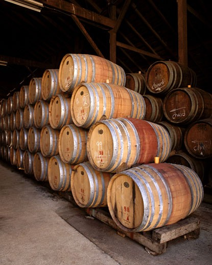 OAK BARREL CASKS for AGING WINE - MONTEREY COUNTY, CALIFORNIA  : Stock Photo