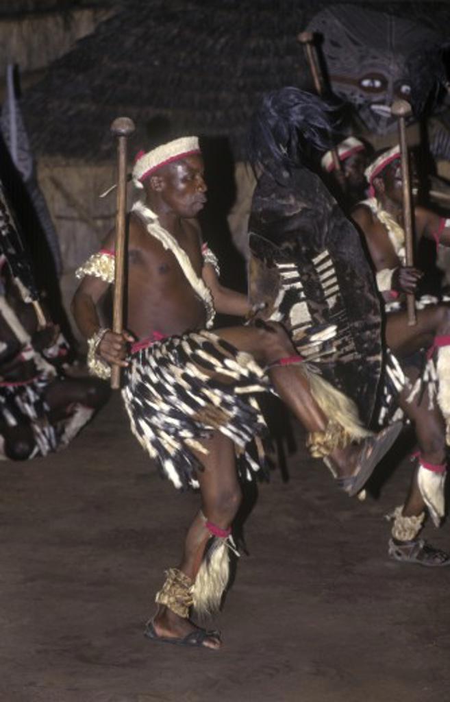 An NDEBELE TRIBAL DANCER displays his fierceness & uses animal skins in his costume - ZIMBABWE : Stock Photo