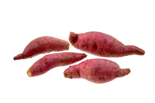 Stock Photo: 1886R-12482 Vegetable, Five Sweet Potato with white background