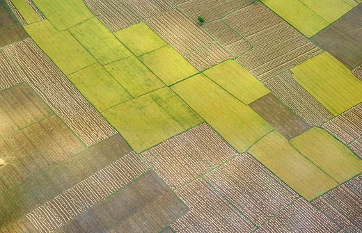 Stock Photo: 1886R-63485 Aerial view of tilled and cultivated field ; Andhra Pradesh ; India