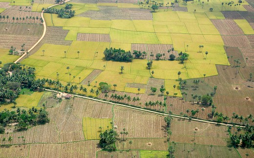 Aerial view of tilled and cultivated field ; Andhra Pradesh ; India : Stock Photo