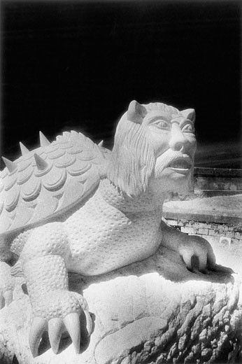 The Tarasque, Sculpture by Pascal Demaumont, Tarascon, Provence, France : Stock Photo