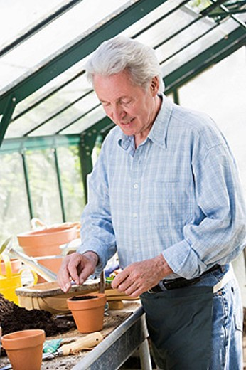 Man in greenhouse putting seed in pot smiling : Stock Photo
