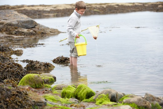 Stock Photo: 1888R-38453 Boy on beach collecting shells