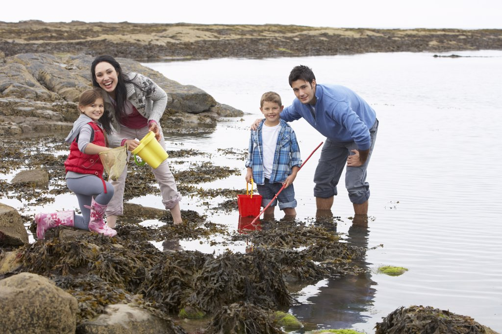 Young family at beach collecting shells : Stock Photo