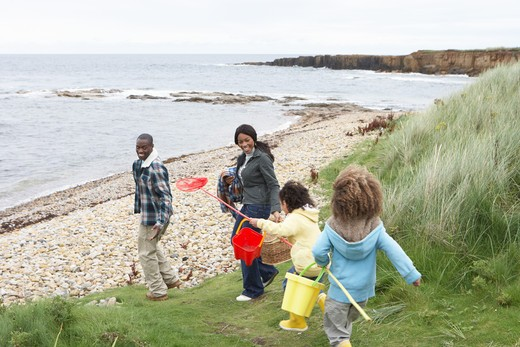 Family on beach collecting shells : Stock Photo