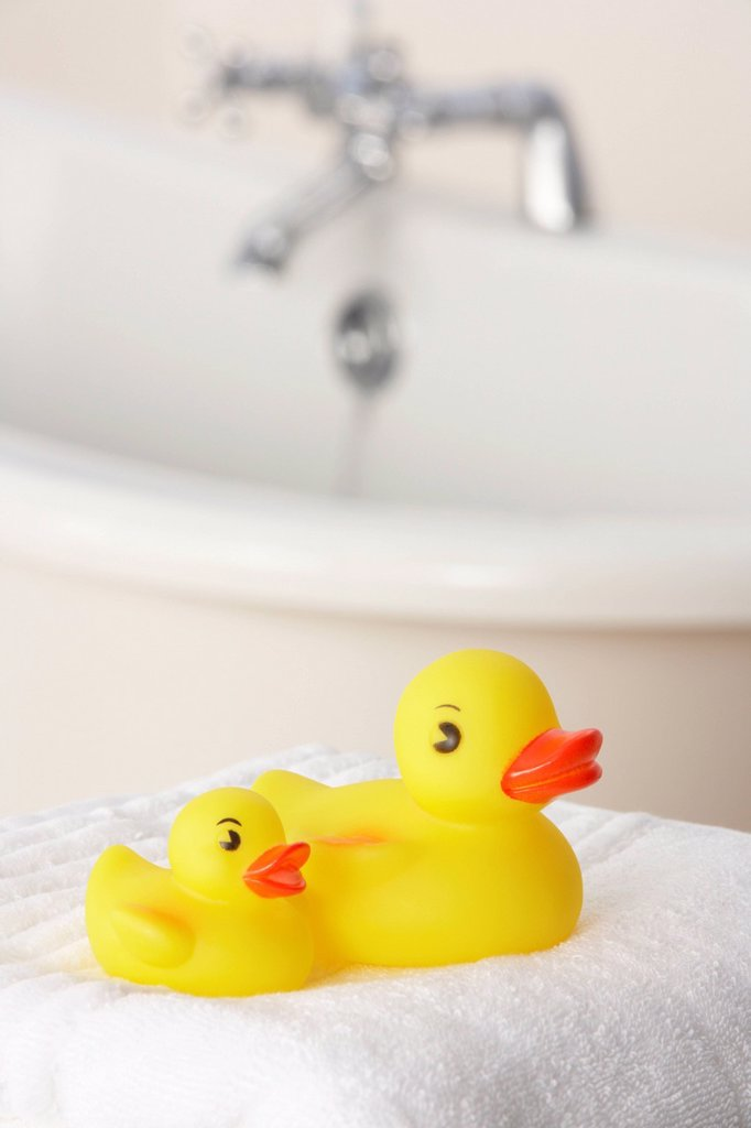 Stock Photo: 1888R-43768 Rubber ducks in bathroom