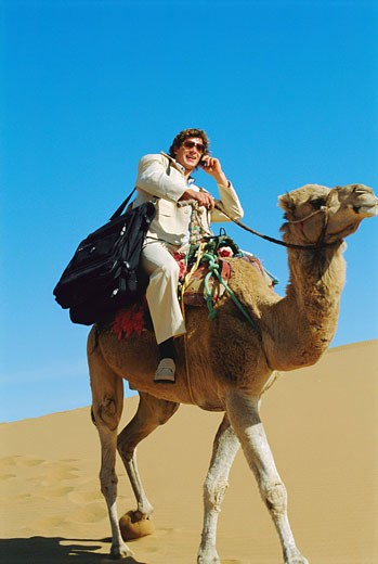Stock Photo: 1888R-8594 Man outdoors in the desert using a cellular phone on a camel