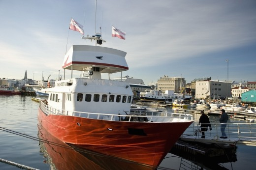 Whale Watching Centre boat; Reykjavik, Iceland : Stock Photo