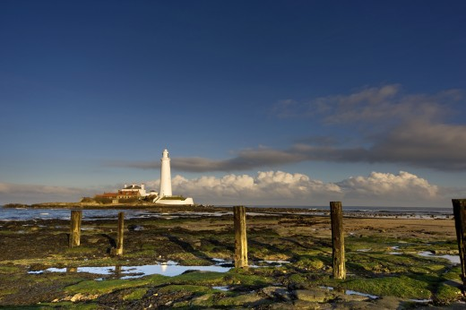 Shore and lighthouse in distance; Whitley Bay, Northumberland, England : Stock Photo