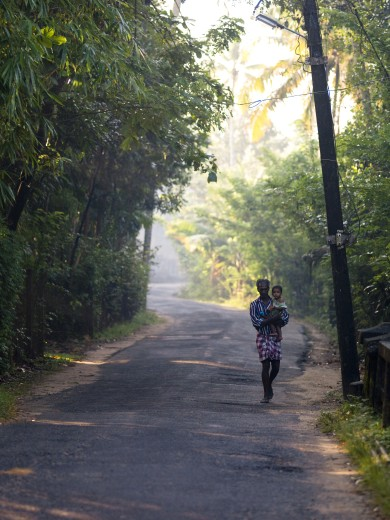 Kerala,India;Father carrying baby daughter down lush tree lined road : Stock Photo