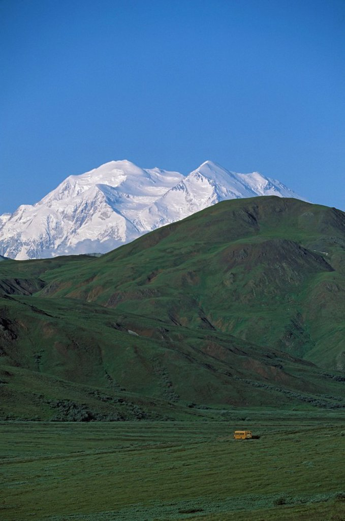 Visitor bus on hill with Mount McKinley in the distance : Stock Photo
