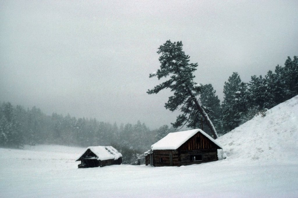 Abandoned homestead in snow storm : Stock Photo
