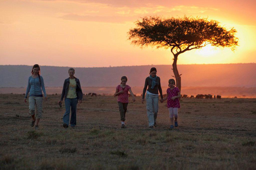 Stock Photo: 1889-59435 Sunset, Maasai Mara, Kenya, Africa