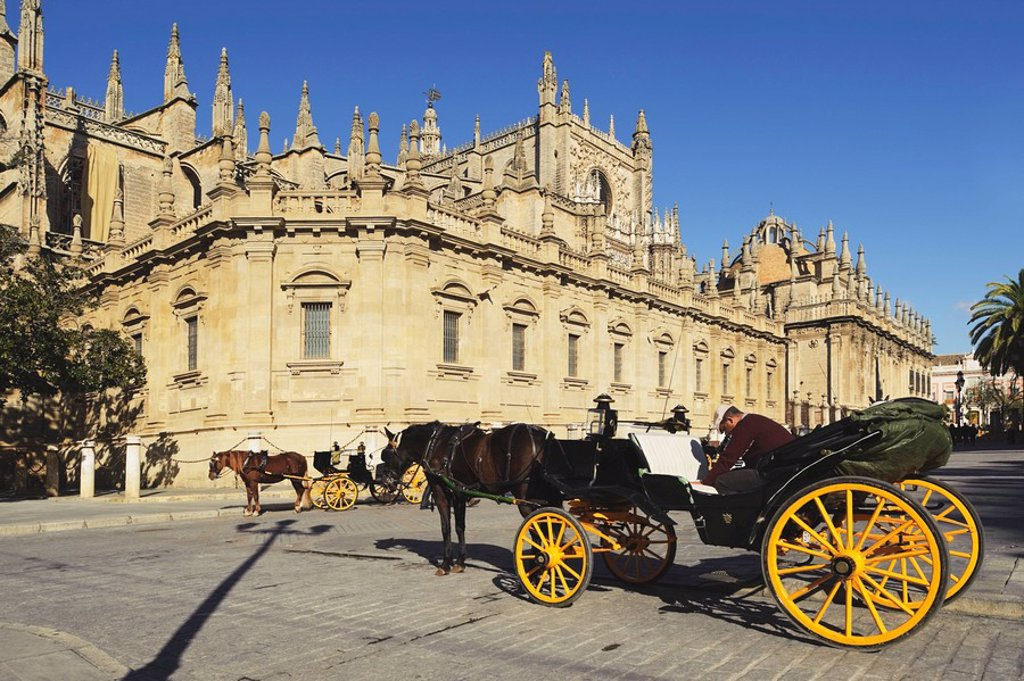 Seville, Andalusia, Spain, Horses And Carriages In Front Of Cathedral Of Seville : Stock Photo