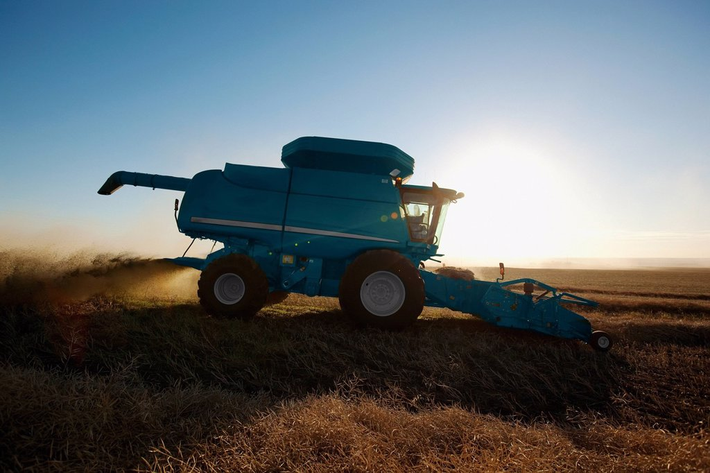 Stock Photo: 1889-63728 combine tractor in action around sunset, three hills, alberta, canada